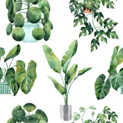 Nálepka Watercolor seamless pattern with tropical leaves and houseplants leaves. Greenery. Succulent. Floral Design element. Perfect for invitations, cards, prints, posters
