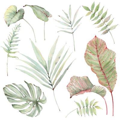 Nálepka watercolor tropical plants set.