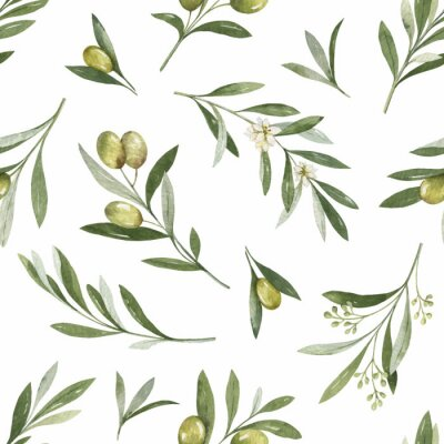 Nálepka Watercolor vector seamless pattern of olive branches and leaves.