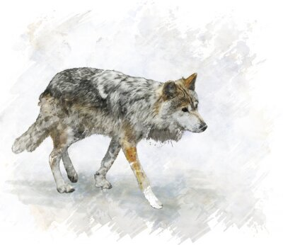 Nálepka Wolf Watercolor