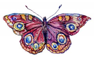 Nálepka бабочка акварель, графика, насекомое, рисунок,