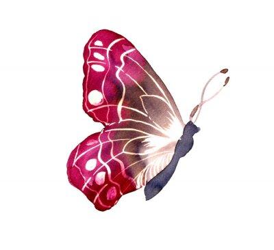 Nálepka 바틱 염색 기법 으로 그려진 나비