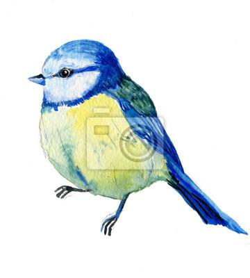 Nálepka акварель птица синица
