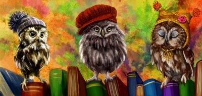 Nálepka Совы и книги