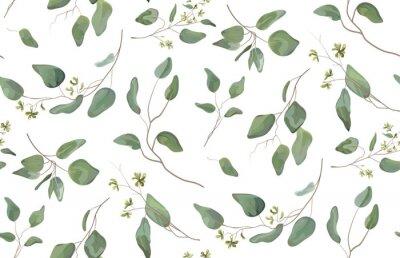 Nálepka Eucalyptus různé strom, listy přírodní větve se zelenými listy semena tropický bezešvé vzor, akvarel styl. Vektorové dekorativní krásné roztomilé elegantní ilustrace izolované bílém pozadí