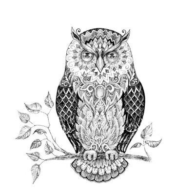 Nálepka Kreslení sova s krásnými vzory