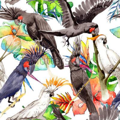 Nálepka Sky pták bílý papoušek vzor v divočině podle stylu akvarel. Divoká svoboda, pták s letícími křídly. Akvarel pták pro pozadí, textury, vzor, rám, hranice nebo tetování.