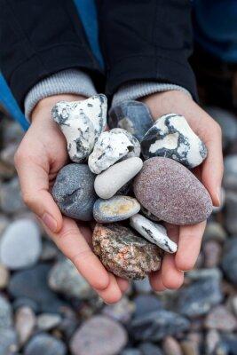 Nálepka Steine sammeln