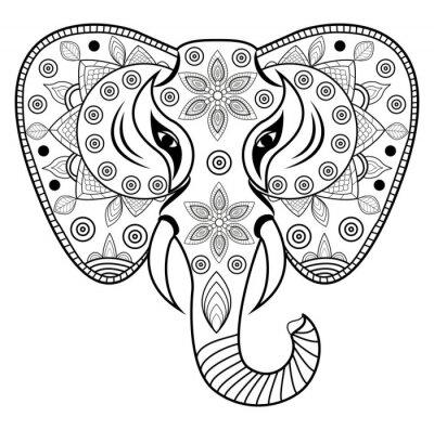 Nálepka Zdobené sloní hlava vektor, testa di elefante decorato vettoriale isolato su sfondo bianco