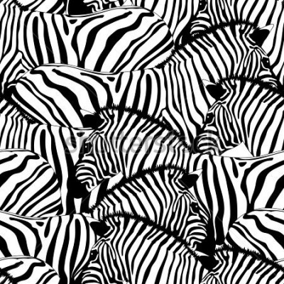 Nálepka Zebra seamless pattern.Savannah Animal ornament. Wild animal texture. Striped black and white. design trendy fabric texture, illustration.