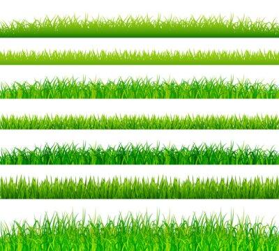 Nálepka Zelená tráva hranice nastavena