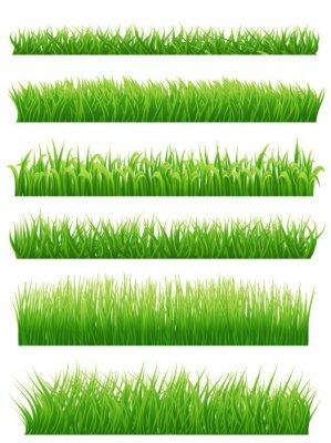 Nálepka Zelená tráva hranice nastavena na bílém pozadí. vektorové ilustrace