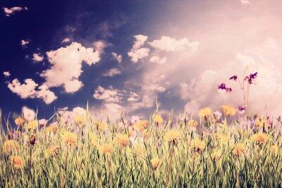 Nálepka Zelené pozadí s trávou