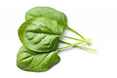 Nálepka zelené špenátové listy