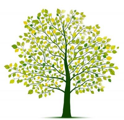 Nálepka zelený strom izolované