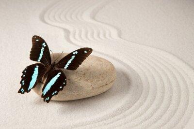 Nálepka Zen motýl