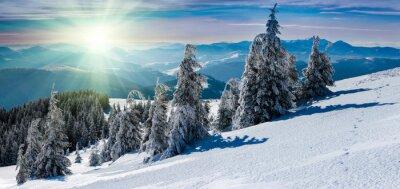Nálepka Zimní panoramatické krajině v horách. Zasněžené stromy a vrcholky hor v dálce.