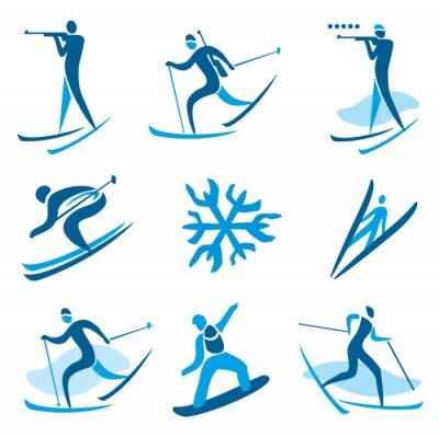 Nálepka Zimní sportovní symboly