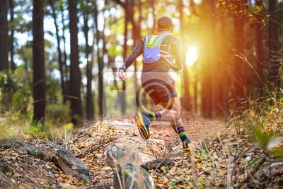 Obraz A man Runner of Trail and athlete's feet wearing sports shoes for trail running in the forest
