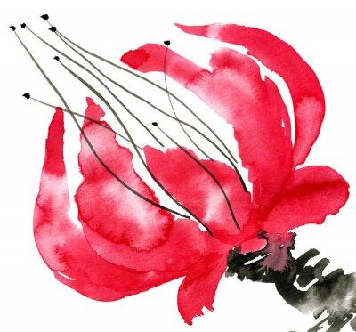 Obraz Abstraktní červený květ. Kreslení mák. Akvarel a inkoust ilustrace ve stylu sumi-e, u-sin. Orientální tradiční malování. Samostatný na bílém pozadí.