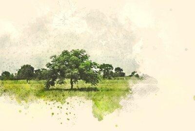 Obraz Abstraktní strom a pole krajina na akvarel ilustrace malování pozadí.
