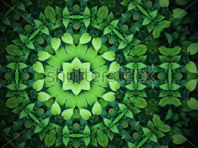 Obraz Abstraktní zeleně pozadí, ve tvaru srdce zelené listy s efektem kaleidoskop