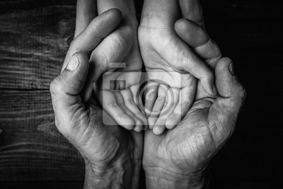 Obraz Adult hands holding kid hands