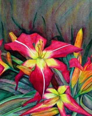 Obraz Akrylátové ilustrace zářivé květy. Květiny den lilie.