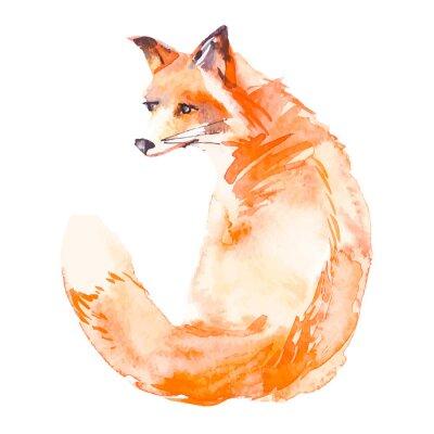 Obraz Akvarel. ,