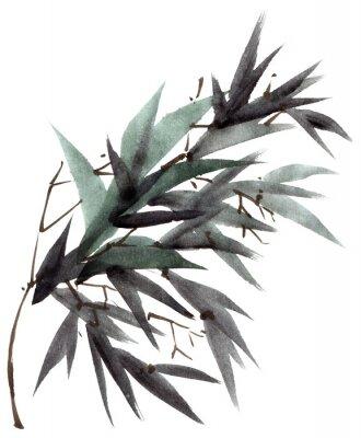 Obraz Akvarel bambusové listy větev
