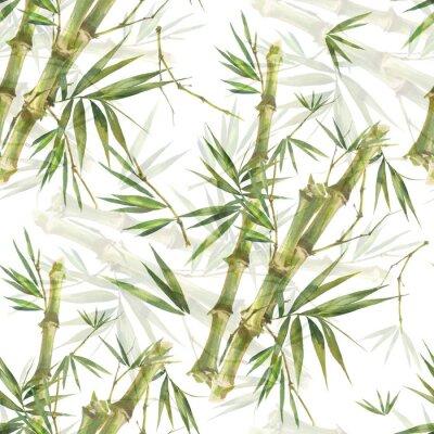 Obraz Akvarel ilustrace bambusových listů, bezešvé vzor na bílém pozadí