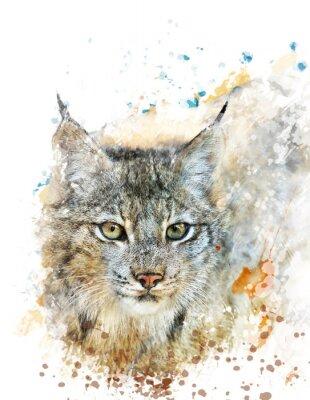Obraz Akvarel Obraz Lynx