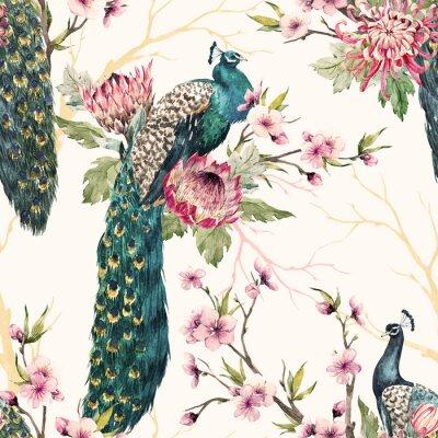 Obraz Akvarel páv vzor