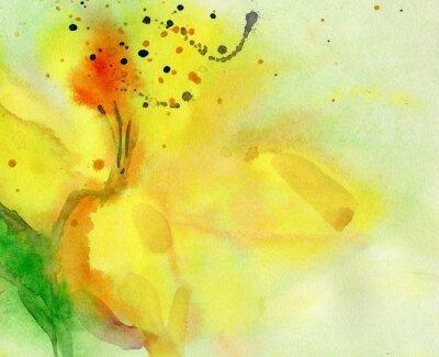 Obraz akvarel pozadí se žlutým lilie. Malba na papíře.