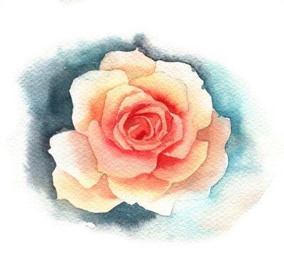 Obraz Akvarel růže