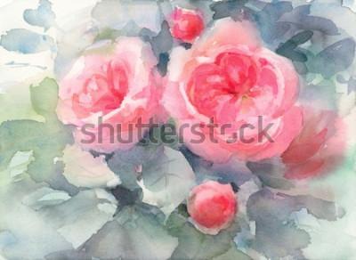 Obraz Akvarel růže květiny květinové pozadí textury ručně malované ilustrace