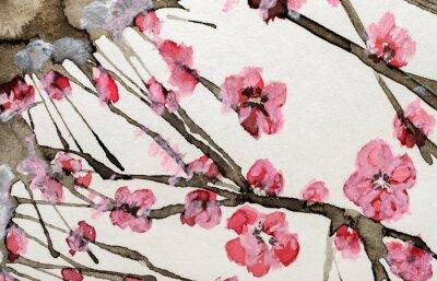 Obraz akvarel růžové květy