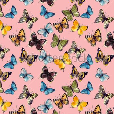 Obraz akvarel vzorek motýlů