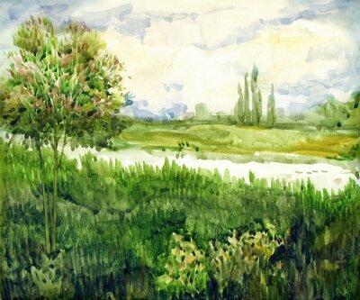 Obraz Akvarelová krajina. Mladý strom na louce poblíž řeky