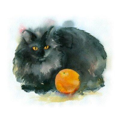 Obraz Akvarelu. Černá kočka s oranžové.