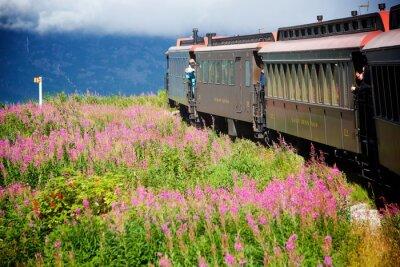 Obraz Alaskan vlaky