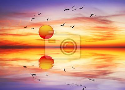 Obraz amanece de Colores