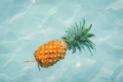 Obraz Ananas do vody na slunné pláži