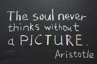 Obraz Aristoteles citace