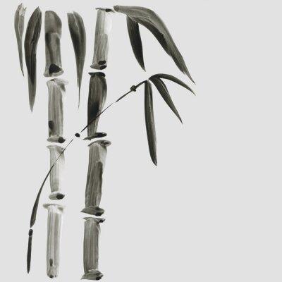 Obraz Bambus v japonském stylu malování. Tradiční Krásné akvarel ručně kreslené ilustrace