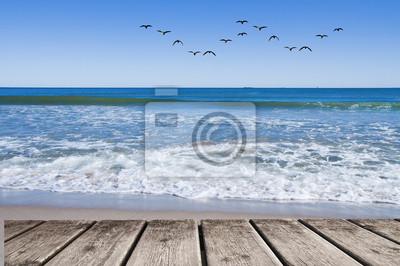 Obraz bandada de gabiotas sobre el mar
