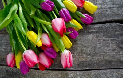 Obraz barevné tulipány na dřevěné desce