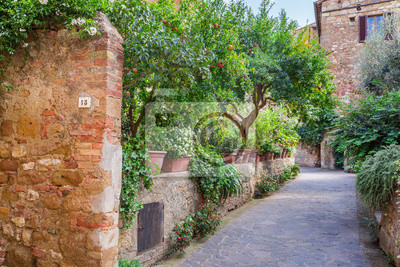 Beautiful park in the vintage town in Tuscany, Pienza