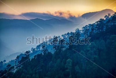 Obraz Beautiful view of Foggy pine forest and sunrise at himalaya range, Almora, Ranikhet, Uttarakhand, India.