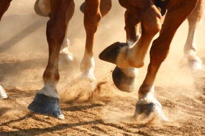 Obraz Běh Koně kopyt
